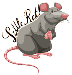 Little rat with text