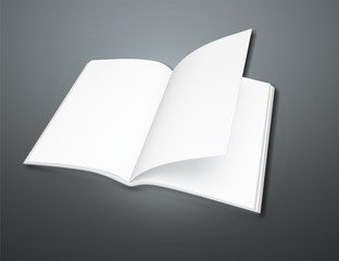 Brochure, mockup, blank.