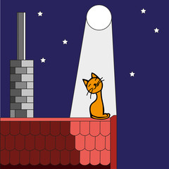 Kitten on the roof in the moonlight