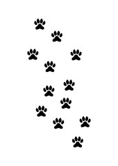 Animal Paw in walk - Vector