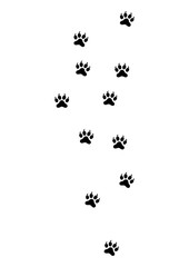 Simple Animal Footprint Vector