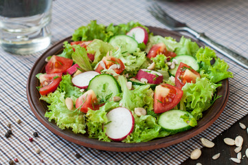 Tomato and cucumber salad with lettuce leafes