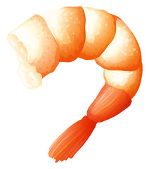 Shrimp tail on white