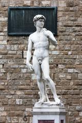 Wall Mural - Italie / Florence - David de Michel-Ange (Piazza della signoria)