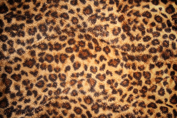 Fotobehang Luipaard Hide of leopard pattern for background and texture