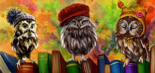 Совы и книги
