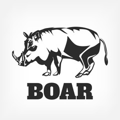 Boar. Vector black illustration