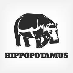 Vector hippopotamus black illustration