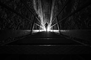 Silhouette di donna su una scala