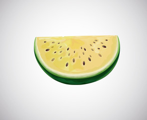 Melon. Slice of fresh Melon fruit.