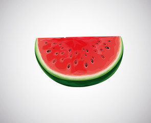 Watermelon. Slice of fresh watermelon fruit.