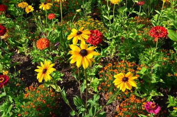 Buntes Blumenbeet im Sommer