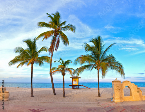 Landscape With Palm Trees On A Beautiful Sunny Summer Afternoon In Hollywood Beach Near Miami Florida