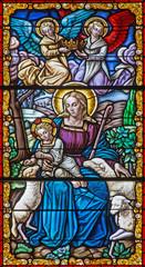Cordoba - Madonna with the child among the sheps - windowpane