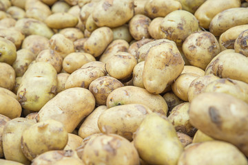 potatoes raw vegetables food in market for pattern texture and b