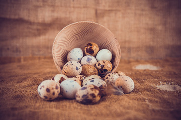 Quail eggs on an old background. Front and a background not in f