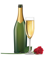 Champagne and rose isolated. Vector illustration