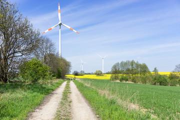 Feldweg in Brandenburg