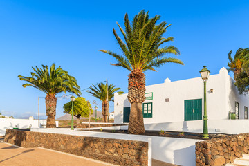 Palm trees and typical Canarian houses in Las Brenas village, Lanzarote, Canary Islands, Spain