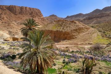 Abenteuerliche Zugfahrt, Tunesien