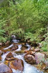 Бурный горный ручей