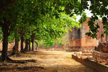 Colour of buddism ancient remains/In Ayutthaya province, Thailand, Asia