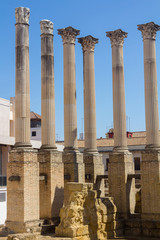 Roman columns of the second century before Christ in Cordoba, Sp