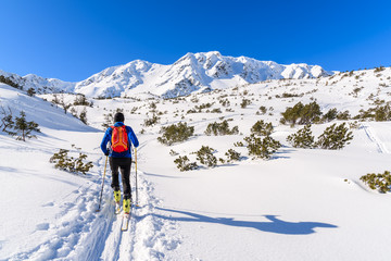 Unidentified ski tourer on winter trail in Rohace valley, Tatra Mountains, Slovakia