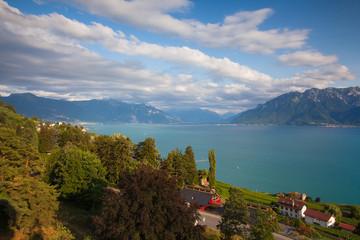 Vineyards of the Chexbres region over lake of Geneva