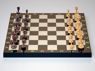 Шахматы в начальной позиции