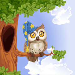 Cute owl wearing a hat sitting on a tree branch