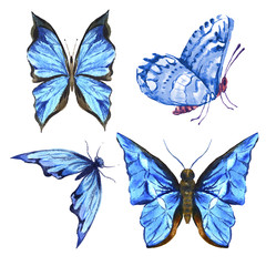Set of beautiful blue colorful summer watercolor butterflies