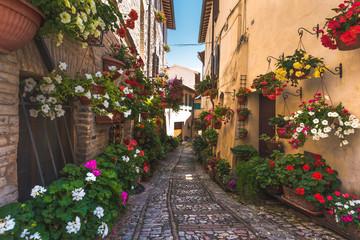 Kwiecista ulica w środkowych Włoszech, w małym średniowiecznym mieście Umbrii - 87446410