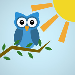 Blue Owl Sitting on Branch in the Sun
