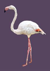 polygonal flamingo, polygon animal, isolated bird vector illustr