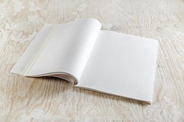 Blank opened brochure