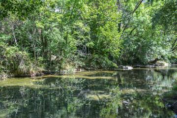rivière la vis traversant le cirque de navacelles