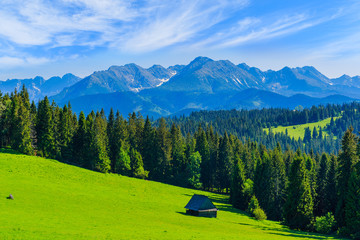 Fototapete - View of Tatra Mountains in summer, Poland