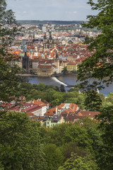 Wall Mural - View of the Vltava River and the Old Town Square