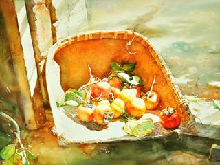 watercolor painting persimmon