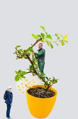 Abstrakt,Frau und Mann mit Bonsai Baum