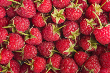 Sweet red raspberry as a background