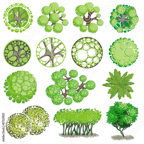 Quot Trees And Bush Item Top View For Landscape Design Vector