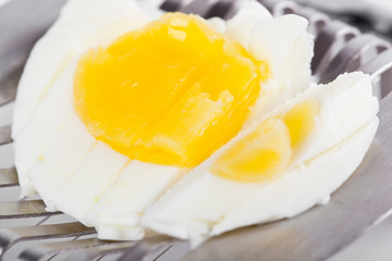 Half  egg on cutter