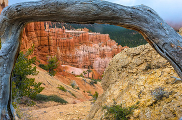 Bryce Canyon Under Natural Wooden Frame