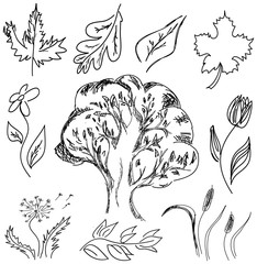 Drawn tree and flowers. Vector illustration
