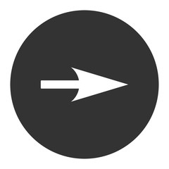 Arrow Axis X flat white and gray colors round button