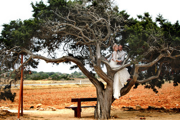 beautiful  gorgeous blonde bride  and stylish groom on the tree of love cedar, wedding ceremony  on cyprus
