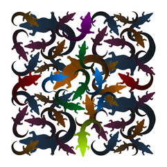 Colored Alligator contours - B