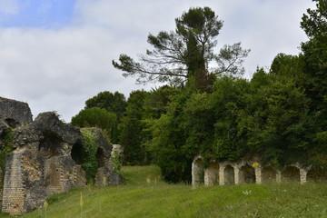 Ruines sous la végétation de l'une des dépendances des arènes gallo-romaines de Saintes